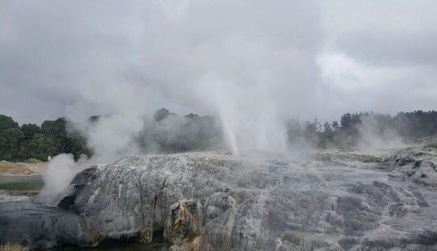 Mesmerizing Geysers & Maori warmth @ 'Te Puia' -Rotorua, New Zealand