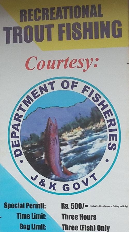 Travel Blogs on Trout Fishing Gulmarg, Leh Ladakh
