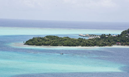 Snorkel & Scuba with Sting Rays and Lemon Sharks in Lagoons of Luxurious Bora Bora.