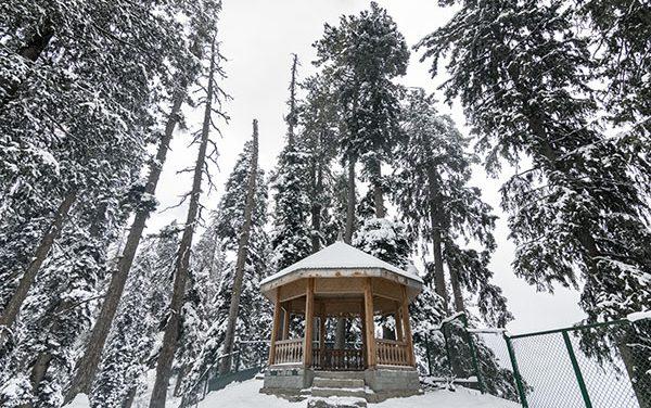 Mesmerizing Kashmir in Winter